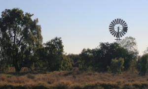Isaac Plains - windmill