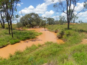carborough creek